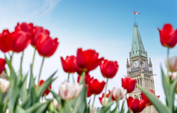 De Toronto a Montreal: circuito por el este canadiense